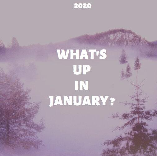 Screen Shot 2020-01-26 at 10