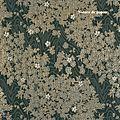 papier-decora-kyoto-noir-gris-argent