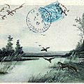 1917-01-15 Chasse aux canards