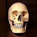 L'histoire d'un crâne français qui voulait se rendre au maroc