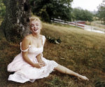 mm_by_shaw_62941_05562866_122_228lo
