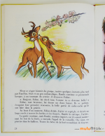 BAMBI-Album-Hachette-7-muluBrok-Vintage