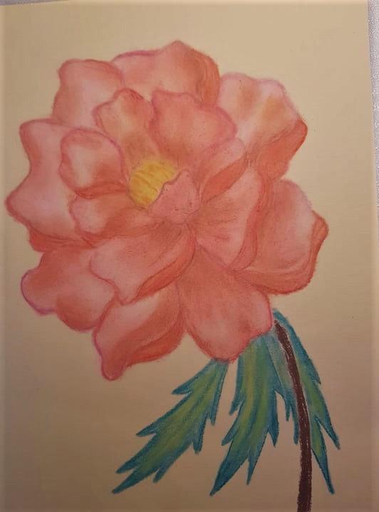 Fleur au pastel Fleur à l'acrylique