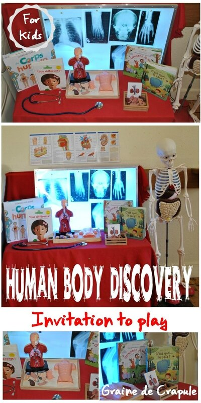 human body discovery