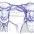 Croquis les moutons