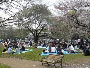 Canalblog_Tokyo03_11_Avril_2010_083