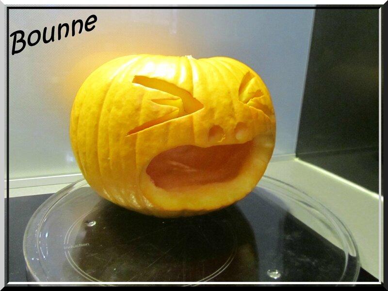 Vomit de citrouille Halloween (3)