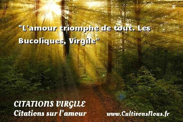 5626-lamour-triomphe-de-tout