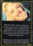 card_marilyn_sports_time_1995_num108b