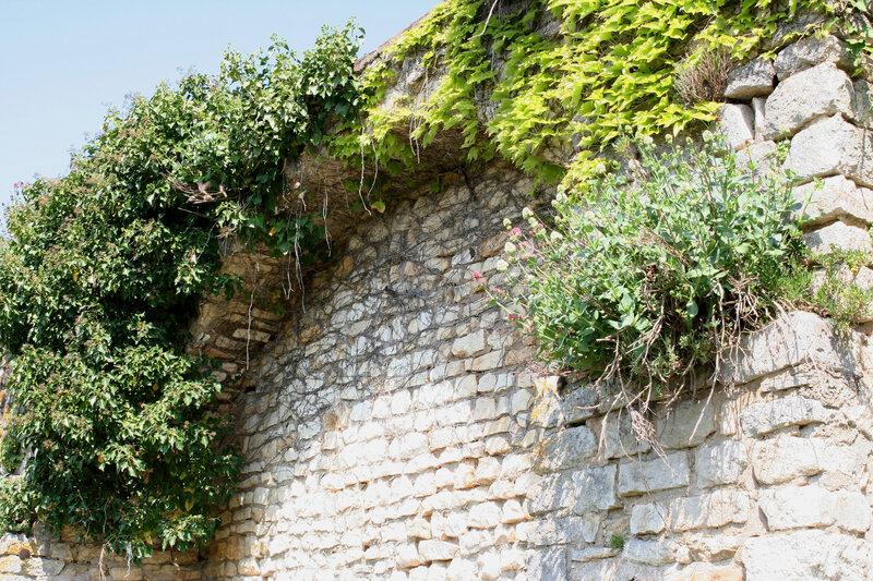 La Charite sur Loire 184