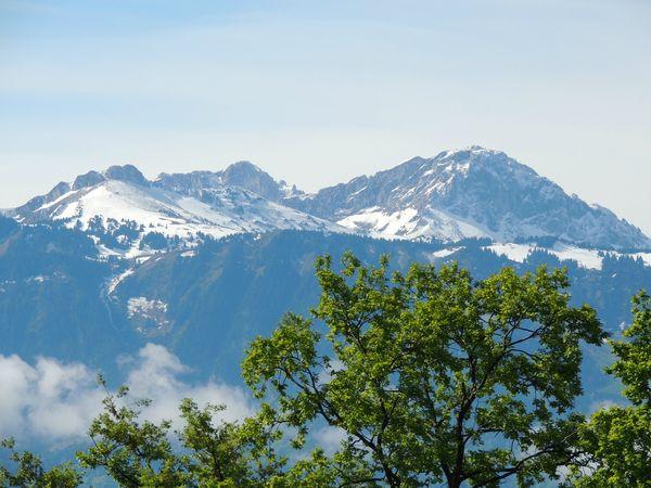 Départ et Alpes Suisses (22)