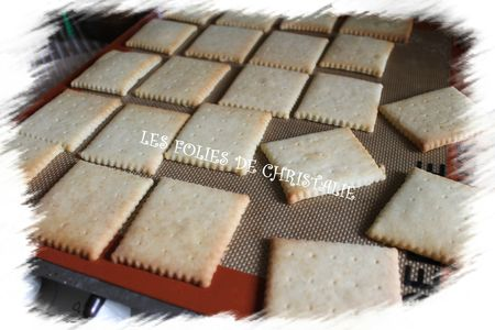 Choco-biscuits 7