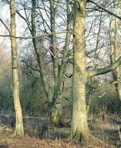 Untitled_2002__man_in_tree__web