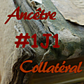 #1j1ancetre - #1j1collateral - 20 juillet