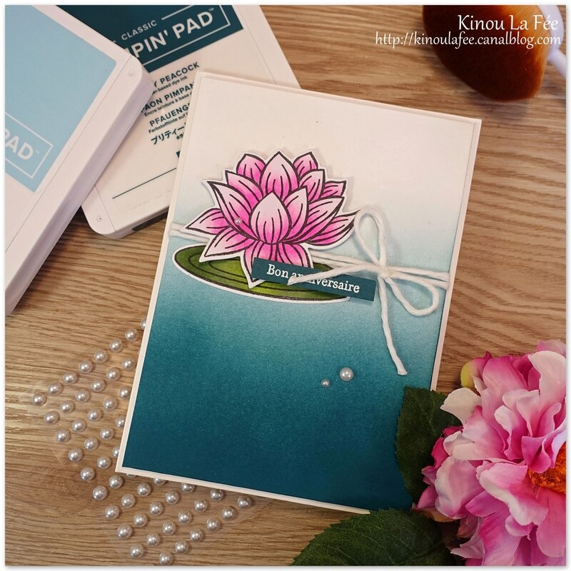Carte Lovely Lily Pad 1