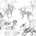 anatomie dragon copie72a4