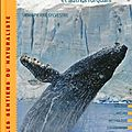 Les baleines et autres rorquals - extraits