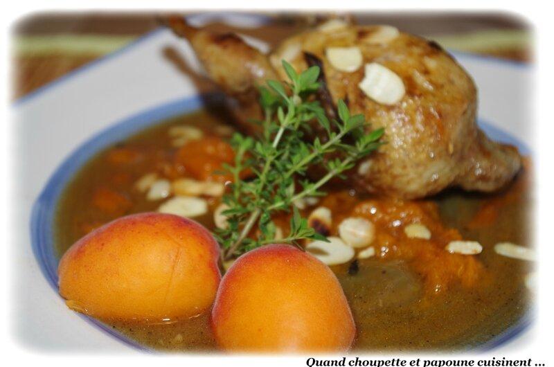 cailles aux abricots-478