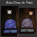 20 Notre Dame (Large)