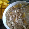 porridge_mangue_co