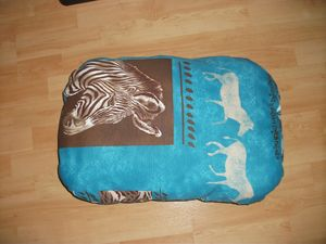 COUSSIN N°2 001