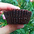 Muffin chocolat-banane-cacahuète
