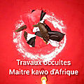 Travaux occultes