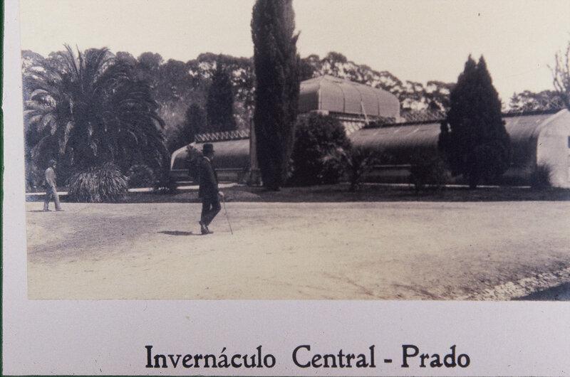 JARDIN BOTÁNICO INVERNACULOS