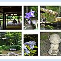 Carte postale n° 5 : rien qui ne m'appartienne au shisen-dô ...