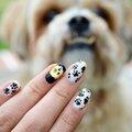 Nail art chien