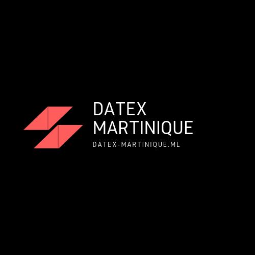 Datex Martinique (53)