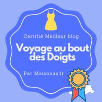 Meilleurs_blogs-Voyage-au-bout-des-Doigts-210x210