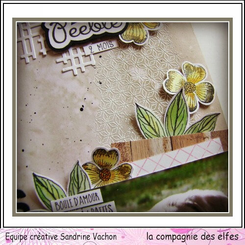 Page PEEBLE 2 MOIS dt LCDE (3)