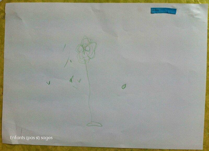 dessin-fleurs-MS2