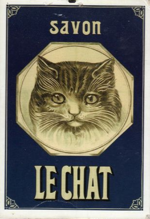 Affiches chats (5)
