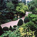 Jardins d'agapanthe