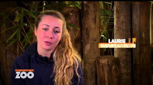 Z unnamed STAGIAIRE LAURIE 2
