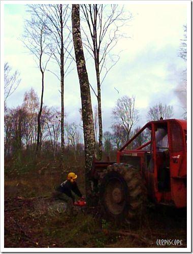 poussée de l'engin forestier