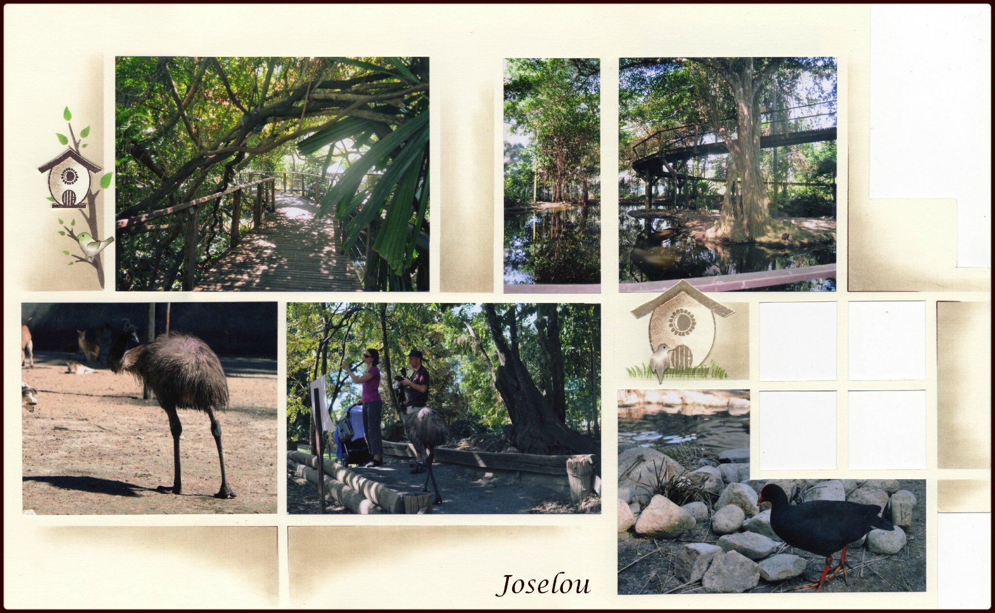 Wildlife habitat 7