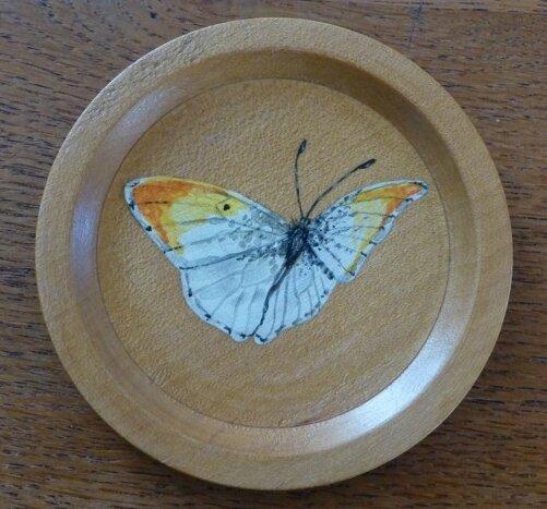 papillon (sous-verre bois) - CélinArtisa