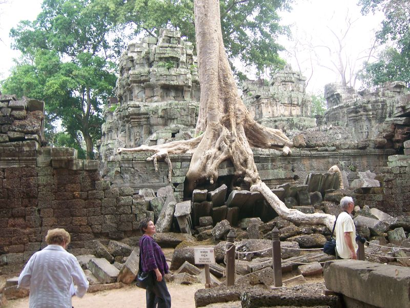 "le Ta Prohm (ou ""Grand Père Brahma"") - album 4"