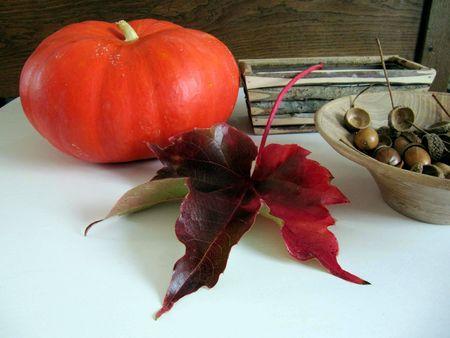 Hermit Trush and pumpkin 2012 022