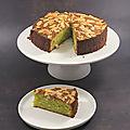 Gâteau fondant aux amandes et aux pistaches