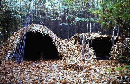 loges de cerclier Rougnac 1980 (7)