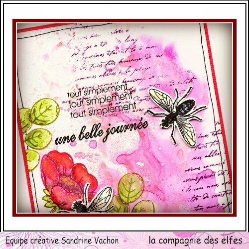 Carte insecte UNE BELLE JOURNEE DT LCDE (2)
