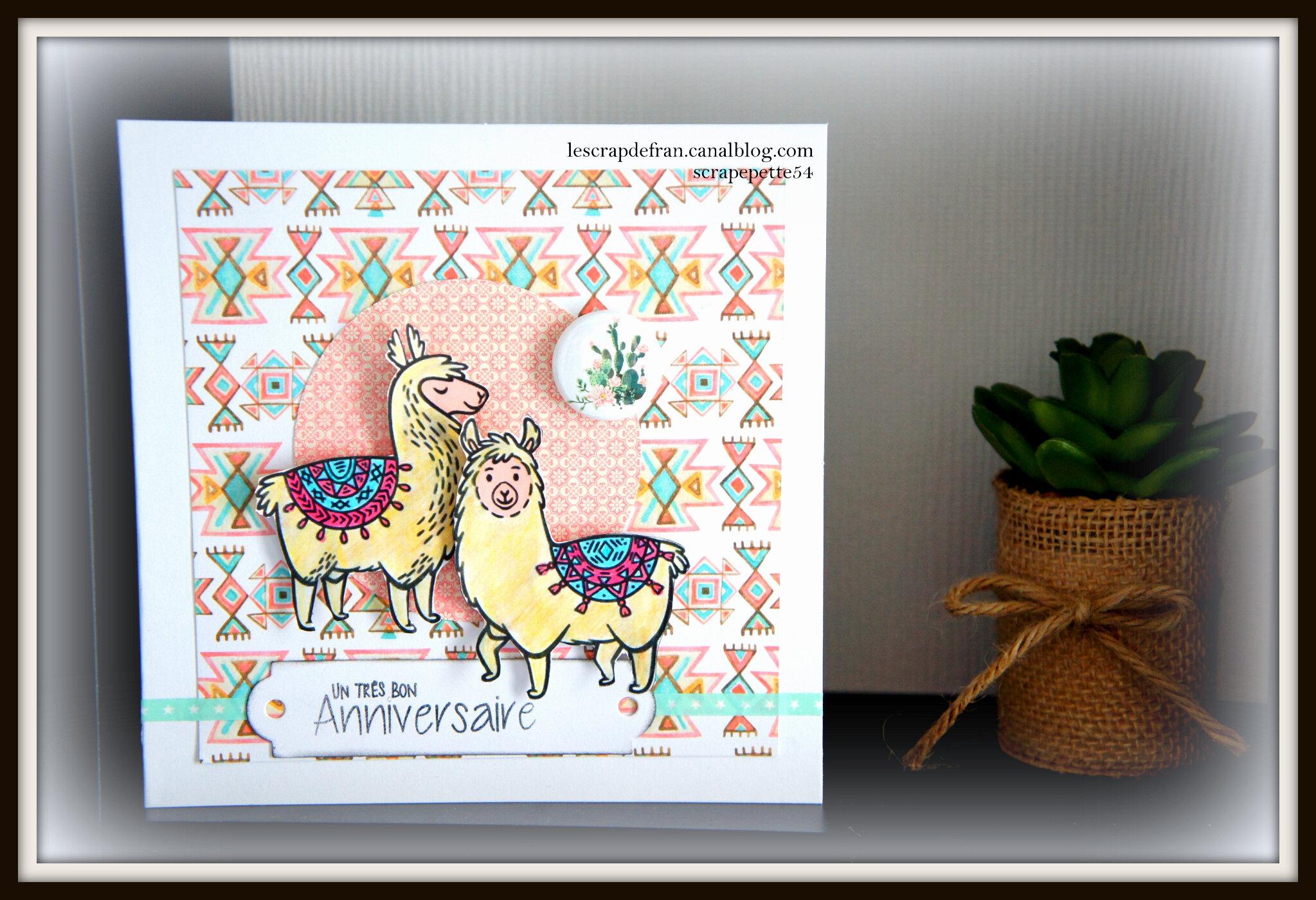 un anniversaire sous le signe du lama