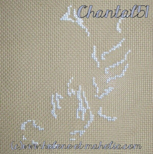 chantal 51_salfev15_1