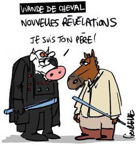 goubelle-cheval