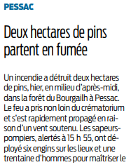 2019 04 23 SO deux hectares de pins