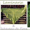 Laminaria - Renaissance Dyeing - Aig. 3.75